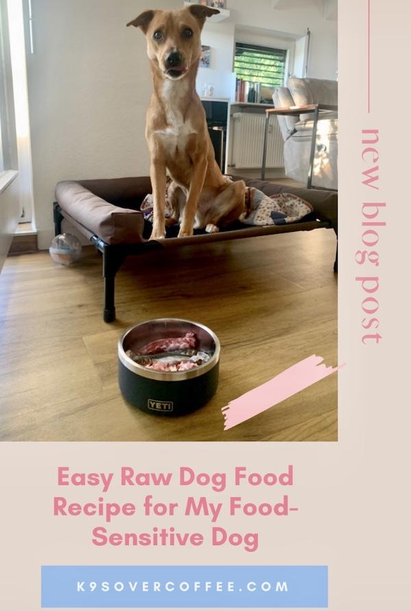 K9sOverCoffee.com | Easy raw dog food recipe for my food sensitive dog